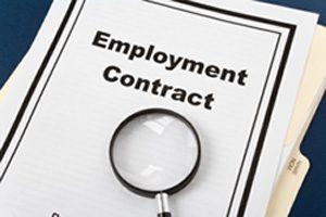 Cairns Employment Lawyer
